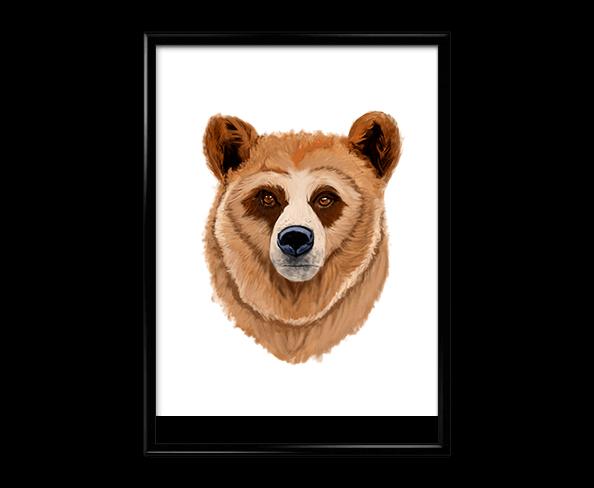 bear print affiche hd shop deco rennes